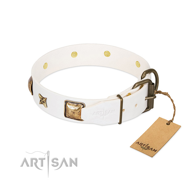 Full grain leather dog collar with strong hardware and decorations