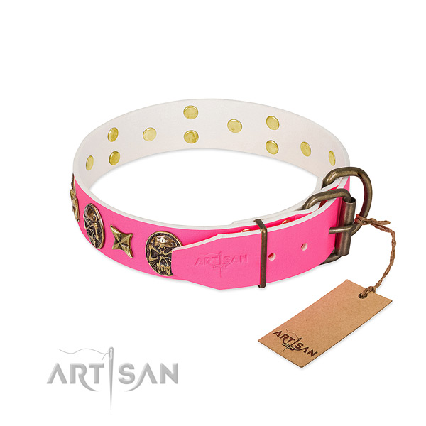 Strong D-ring on genuine leather collar for everyday walking your pet
