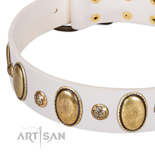 Leather dog collar with stylish adornments