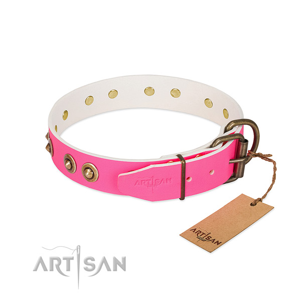 Full grain genuine leather dog collar with durable D-ring and adornments