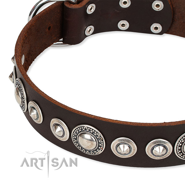 Comfy wearing adorned dog collar of durable full grain genuine leather