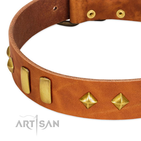 Everyday use leather dog collar with stylish design decorations