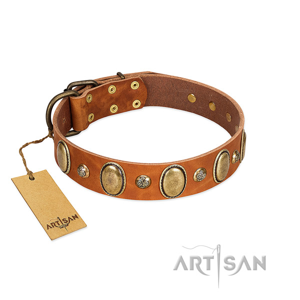 Full grain leather dog collar of top notch material with significant decorations