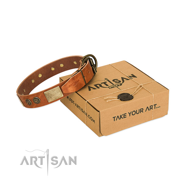 Reliable hardware on leather dog collar for stylish walking