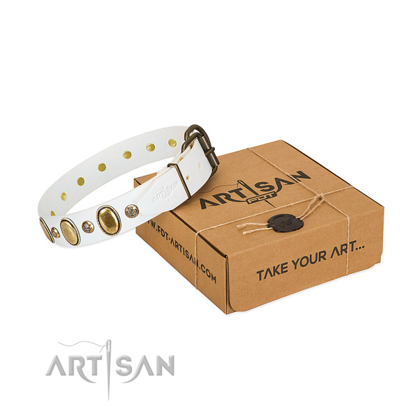 Designer natural leather dog collar with corrosion proof hardware