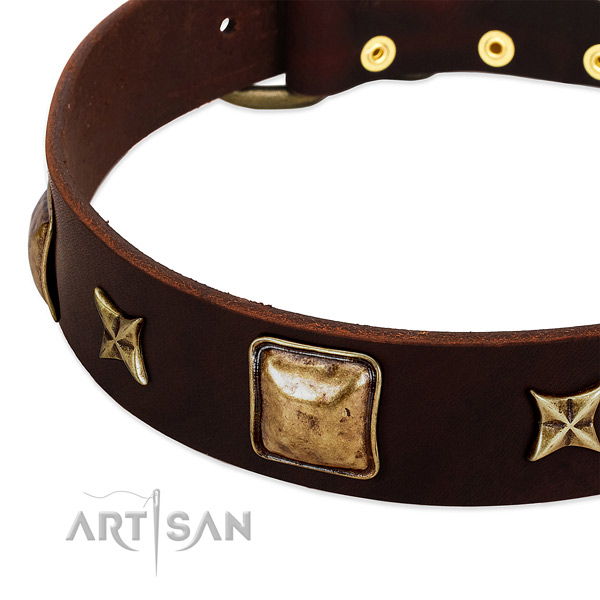 Corrosion resistant decorations on natural genuine leather dog collar for your dog