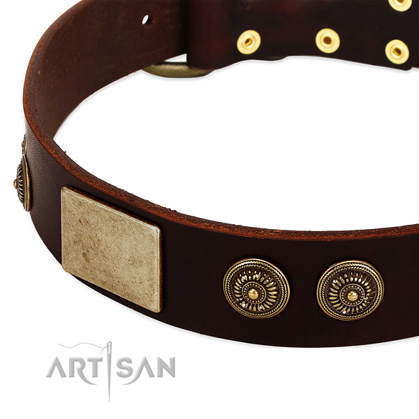 Corrosion proof decorations on genuine leather dog collar for your canine