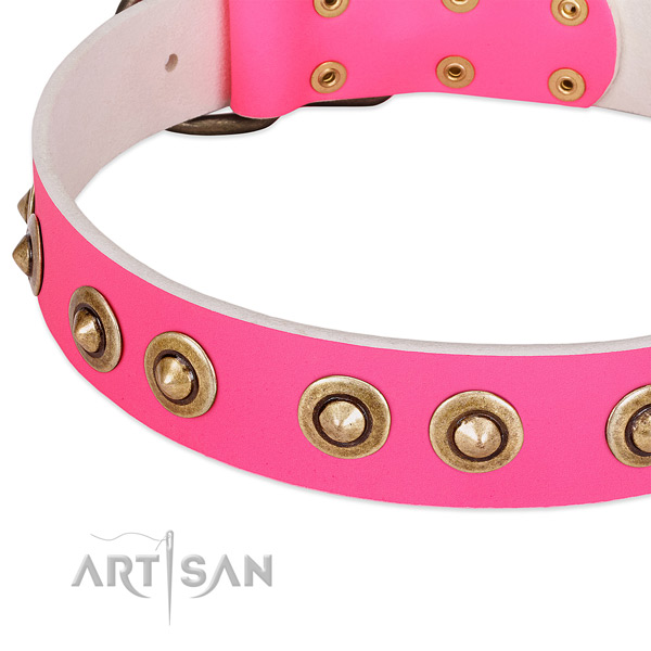 Corrosion proof studs on full grain natural leather dog collar for your dog