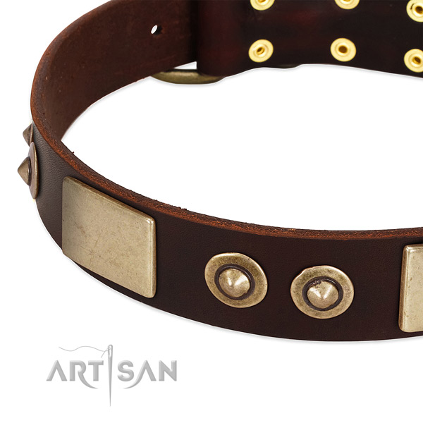 Rust-proof adornments on genuine leather dog collar for your pet
