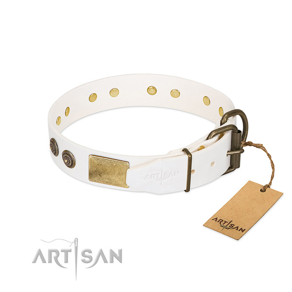 Rust resistant D-ring on full grain leather collar for stylish walking your pet