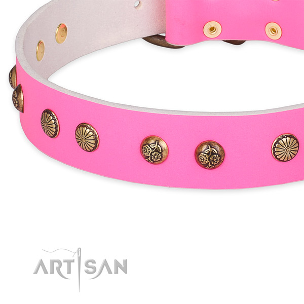 Significant full grain natural leather collar for your stylish canine