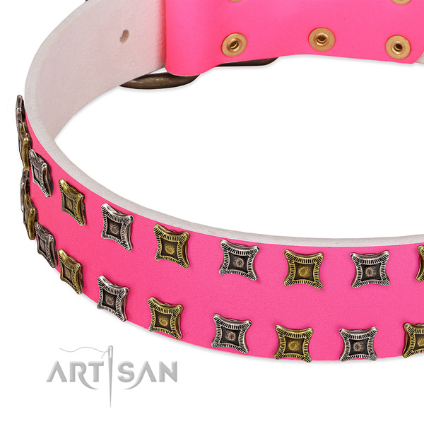Natural leather dog collar with exquisite adornments