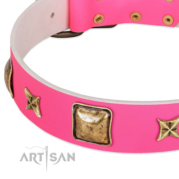 Genuine leather dog collar with stunning embellishments