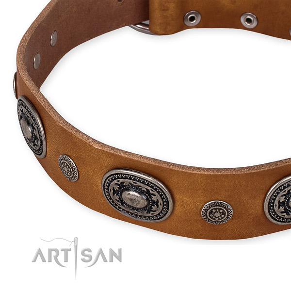 High quality full grain leather dog collar handmade for your handsome canine