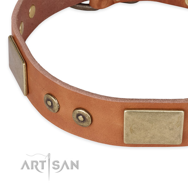 Rust resistant buckle on genuine leather dog collar for your dog