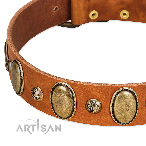 Full grain genuine leather dog collar with designer decorations