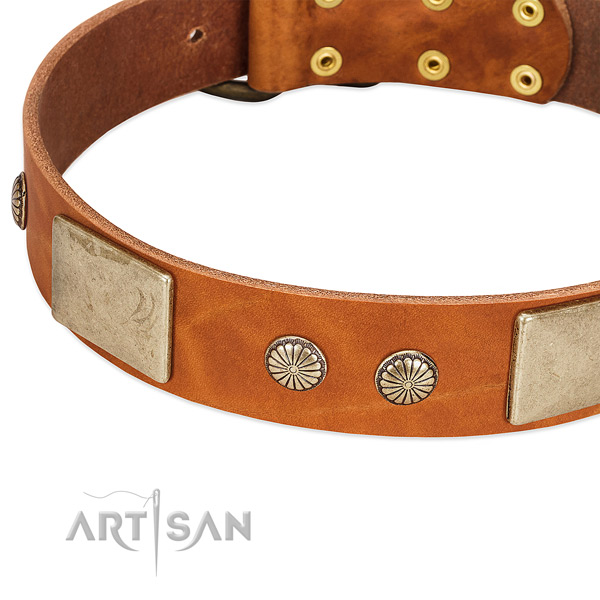 Strong D-ring on leather dog collar for your canine
