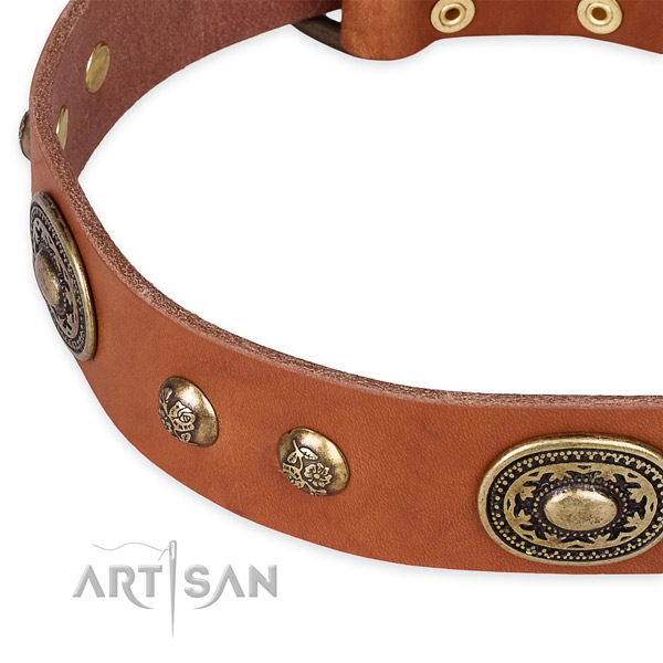 Trendy full grain leather collar for your handsome doggie