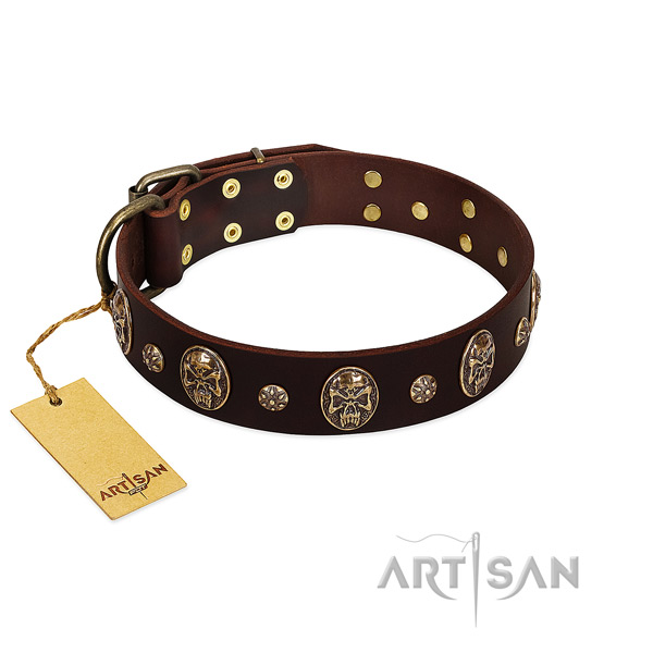 Stunning full grain genuine leather collar for your canine
