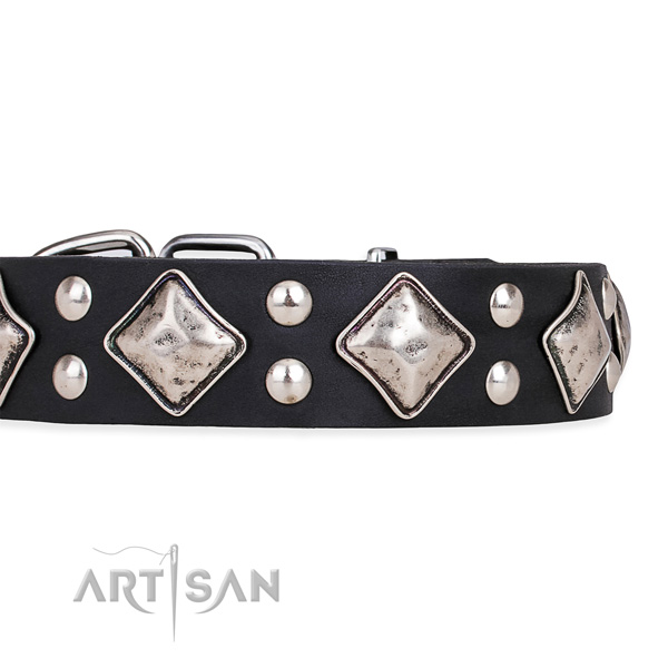 Full grain leather dog collar with stylish design corrosion resistant studs