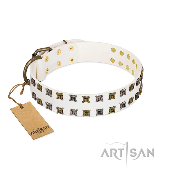 Quality full grain genuine leather dog collar with embellishments for your four-legged friend