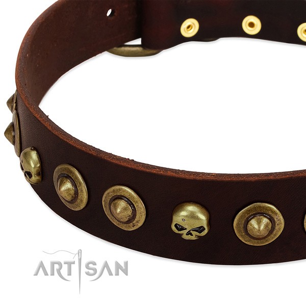 Exquisite studs on full grain natural leather collar for your dog