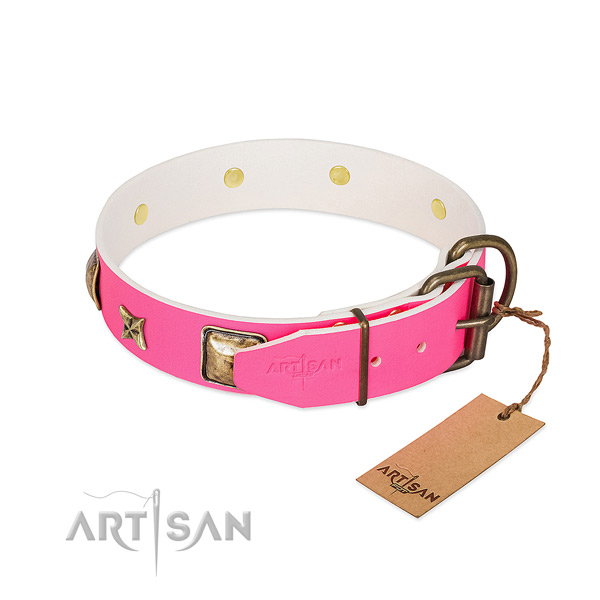 Rust resistant D-ring on genuine leather collar for daily walking your canine