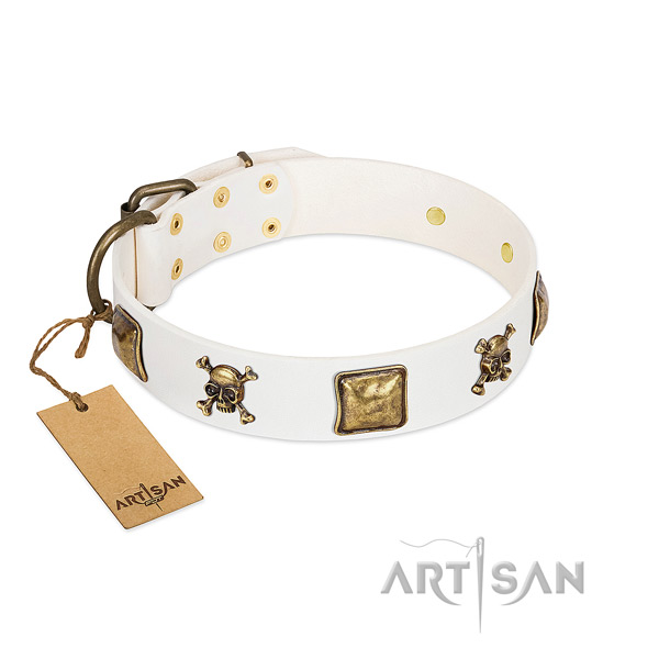 Remarkable genuine leather dog collar with durable embellishments