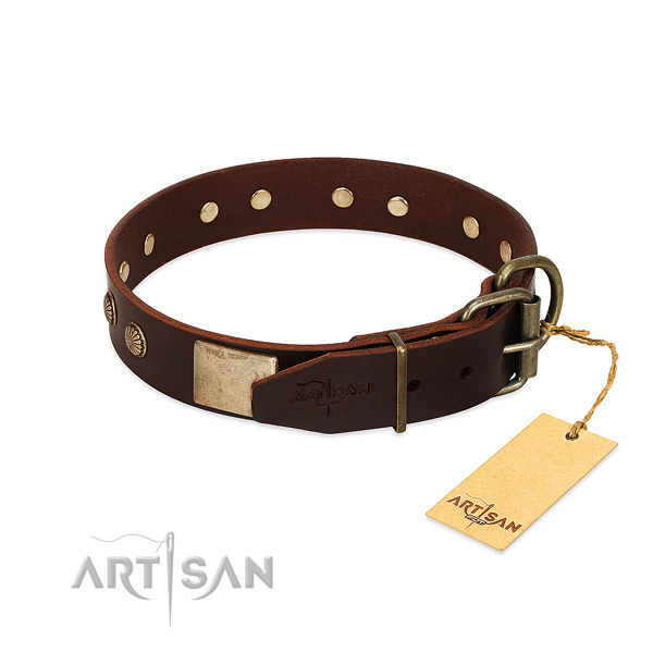 Durable hardware on daily use dog collar