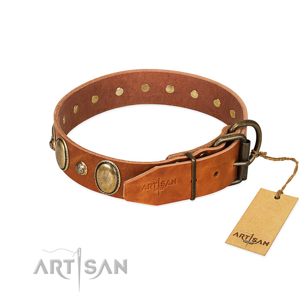 Significant natural leather dog collar with durable D-ring