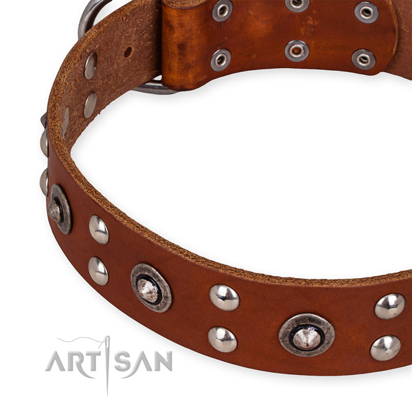 Full grain genuine leather collar with reliable buckle for your stylish four-legged friend