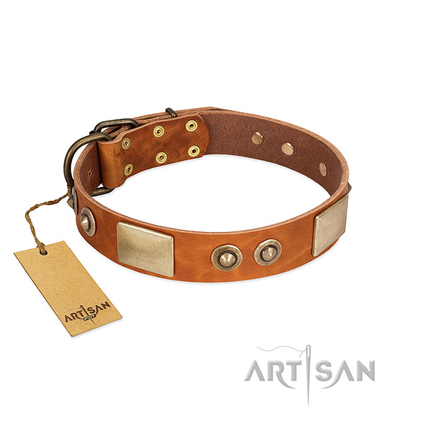 Easy wearing genuine leather dog collar for walking your dog