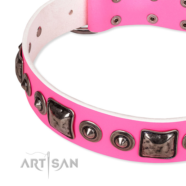 Top rate leather dog collar created for your stylish dog