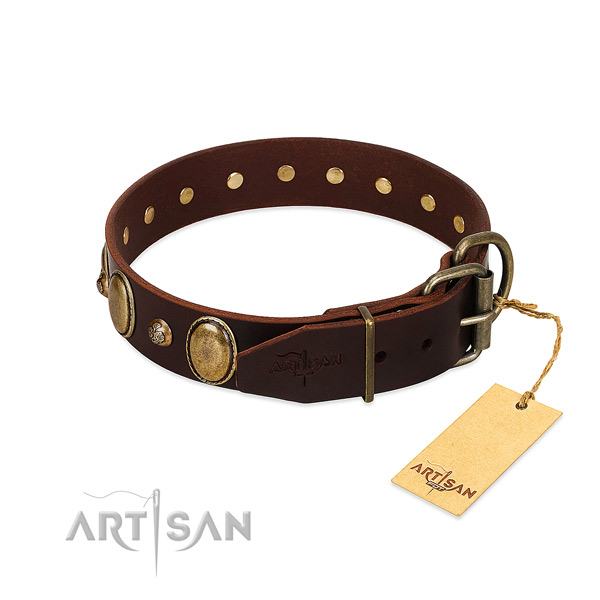 Rust-proof hardware on leather collar for walking your canine