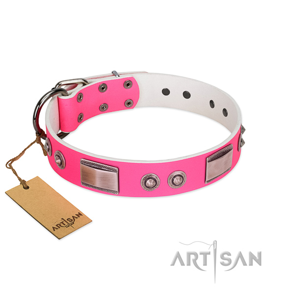 Stunning natural leather collar with embellishments for your dog