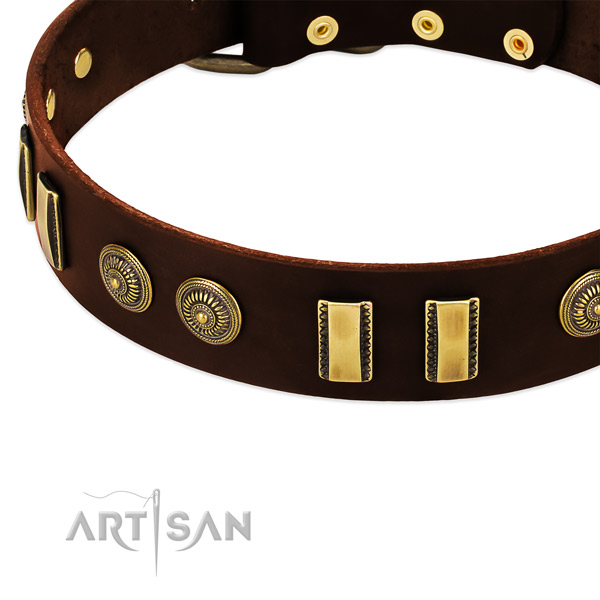 Rust resistant embellishments on natural leather dog collar for your pet