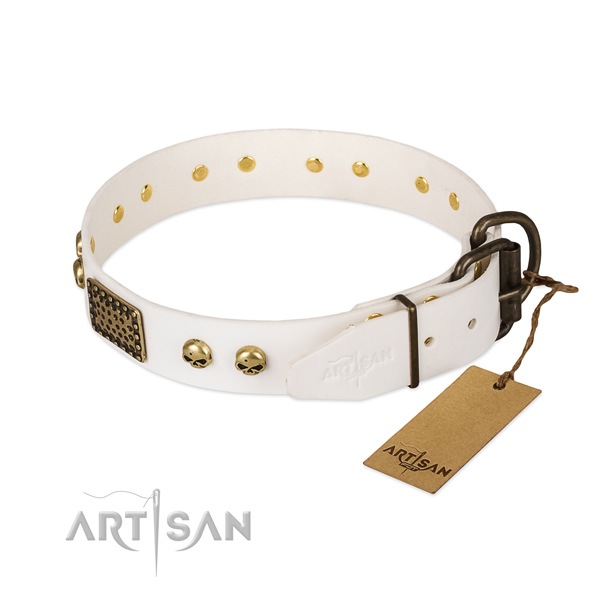 Adjustable natural leather dog collar for stylish walking your doggie
