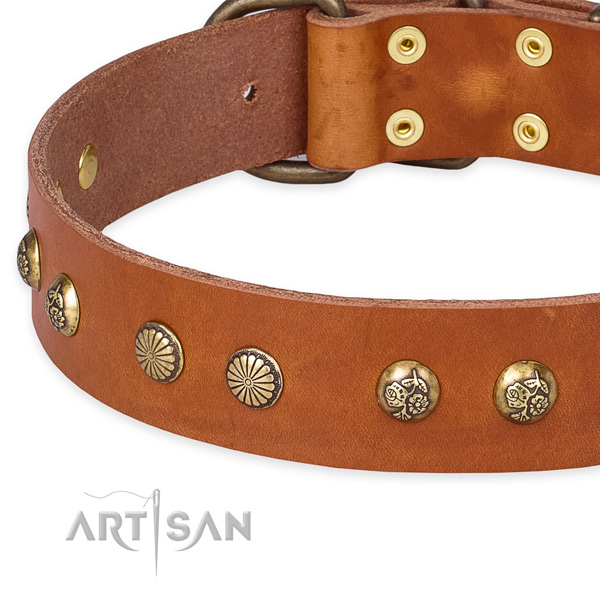 Full grain genuine leather collar with durable traditional buckle for your stylish doggie