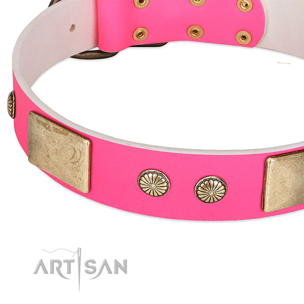 Rust-proof studs on natural leather dog collar for your doggie
