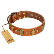 """Crystal Sand"" FDT Artisan Tan Leather Bullmastiff Collar with Vintage Looking Oval and Round Studs"