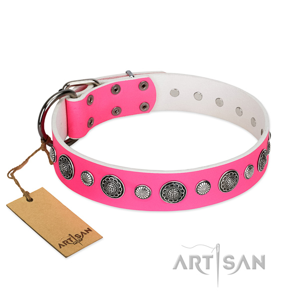 Reliable full grain leather dog collar with corrosion proof buckle
