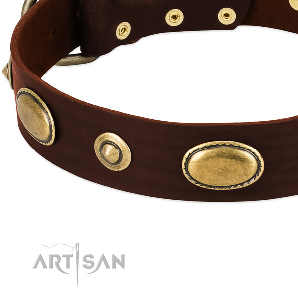 Strong adornments on natural leather dog collar for your four-legged friend