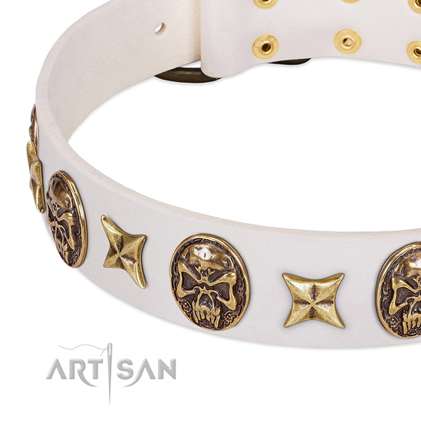 Top quality dog collar made for your handsome doggie