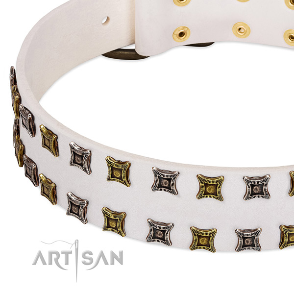 Leather dog collar with studs for your attractive pet
