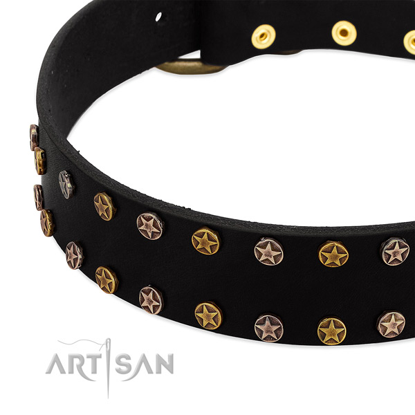 Inimitable adornments on natural leather collar for your canine