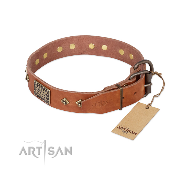 Full grain leather dog collar with rust resistant buckle and adornments
