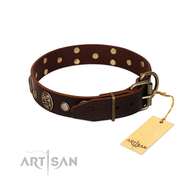 Rust resistant embellishments on stylish walking dog collar