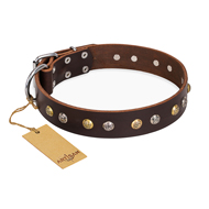 """Rare Flower"" FDT Artisan Brown Leather Bullmastiff Collar Adorned with Old-look Hemisphere Studs"