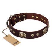 """Breath of Elegance"" FDT Artisan Decorated with Plates Brown Leather Bullmastiff Collar"
