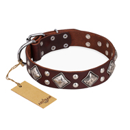 """King of Grace"" FDT Artisan Stylish Leather Bullmastiff Collar with Old Silver-Like Plated Decorations"